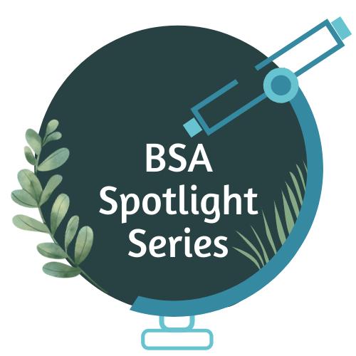 BSA Spotlight Series Logo
