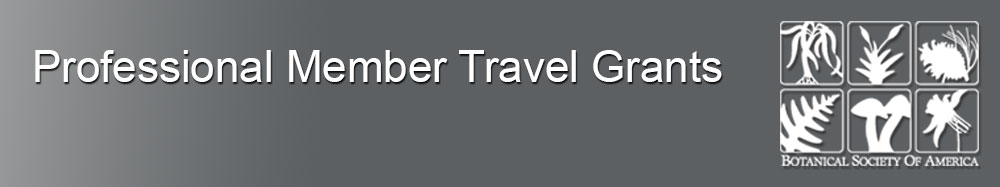 Professional Member Travel Grants
