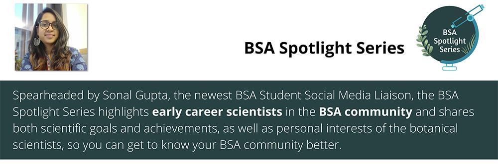 BSA Spotlight Series