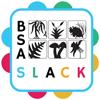 BSA Slack