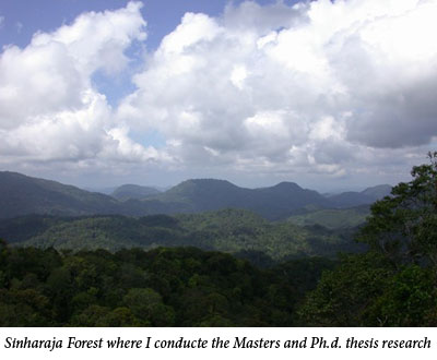 Uromi Goodale, Sinharaja Forest where I conducte the Masters and Ph.d. thesis research