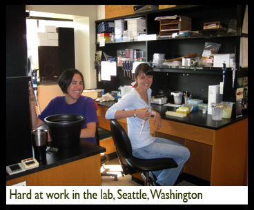 Patricia Lu-Irving, Hard at work in the lab, Seattle, Washington