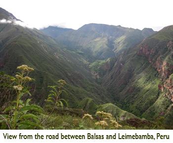 Patricia Lu-Irving, View from the road between Balsas and Leimebamba, Peru