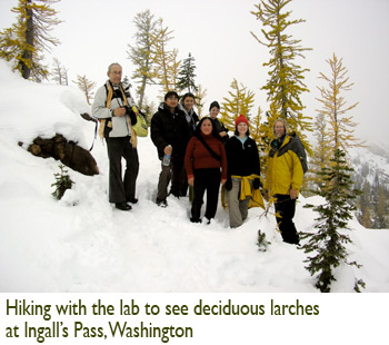 Patricia Lu-Irving, Hiking with the lab to see deciduous larches at Ingall's Pass, Washington